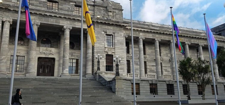 New Zealand Parliament the first in the world to fly the intersex flag