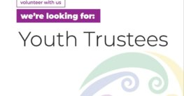 InsideOut Youth Trustee (under 27)